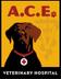 ACE Veterinary Hospital Jobs