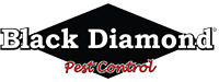 BLACK DIAMOND TERMITE AND PEST CONTROL