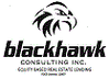 Black Hawk Consulting Inc.
