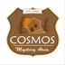 Cosmos Mystery Area Jobs