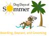 Dog Days of Sommer Jobs