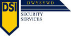 DSI SECURITY SERVICES Jobs