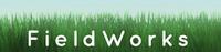 FieldWorks Jobs