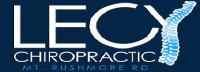 Lecy Chiropractic, P.C. Jobs