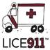 LICE911 Jobs